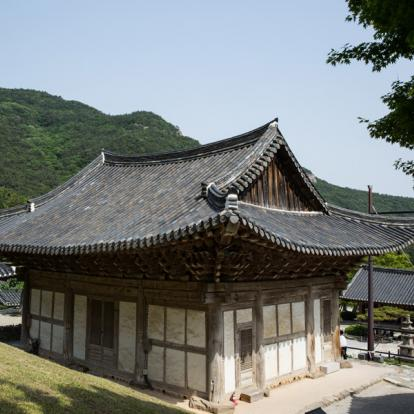 Voyage en Corée du Sud : Insolite Corée