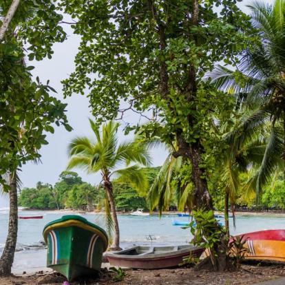 Circuit Costa Rica : Des Caraïbes au Pacifique