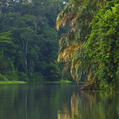 Voyage au Costa Rica : Orchidées et Volcans, des Caraïbes au Pacifique