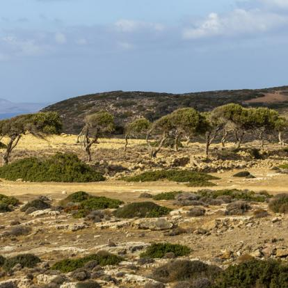 Circuit en Crète : Découverte du Parc Naturel de Sitia