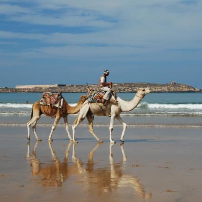 Voyage à Djibouti: Entre Désert et Mer Rouge