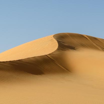 Circuitaux Emirats Arabes Unis : Entre Désert et Océan