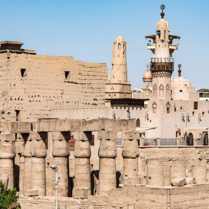 Circuit en Egypte : Le Caire, Haute-Egypte et Plongées en Mer Rouge