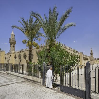 Voyage en Egypte : Richesses Culturelles et Paysages Grandioses