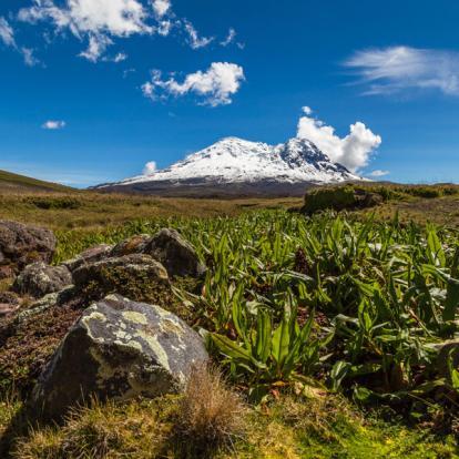 Voyage en Equateur : Tour Multi Activités en Equateur