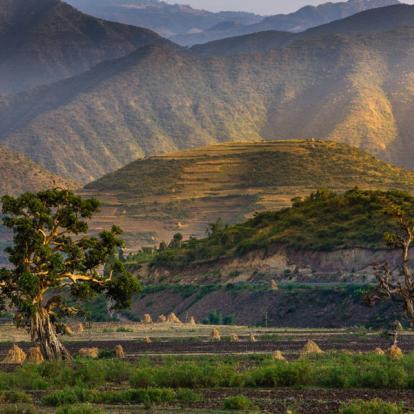 Circuit sur mesure Ethiopie : La Route Historique