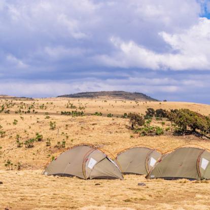 Voyage en Ethiopie : Trek dans les Montagnes du Simien Et du Bale