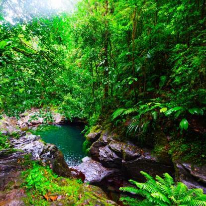 Voyage en Guadeloupe : La Guadeloupe vue de la Mer et de la Terre