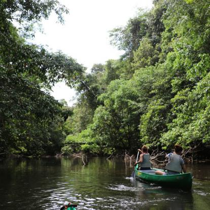 Voyage en Guyane : Les Incontournables en Guyane