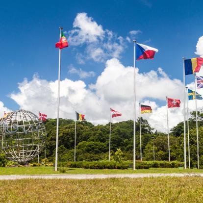 Circuit en Guyane : Les Incontournables en Guyane