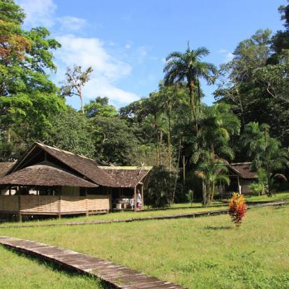 Circuit en Guyane : Séjour « Incontournable » en Guyane