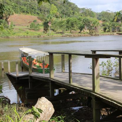 Voyage en Guyane : Séjour « T'Air de Nature »