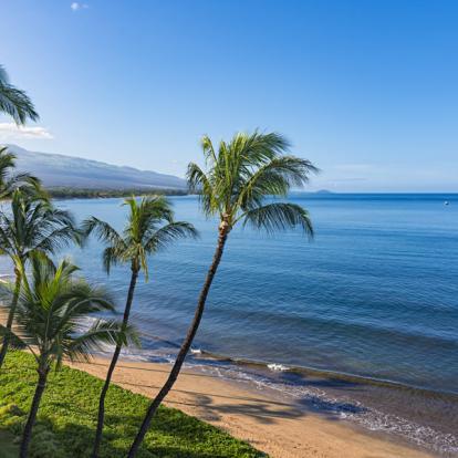 Circuit à Hawaï - Les Volcans d'Hawaii