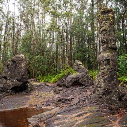 Circuit à Hawaï : Trek Accompagné