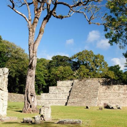 Circuit au Honduras: Du Monde Maya à la Barrière de Corail