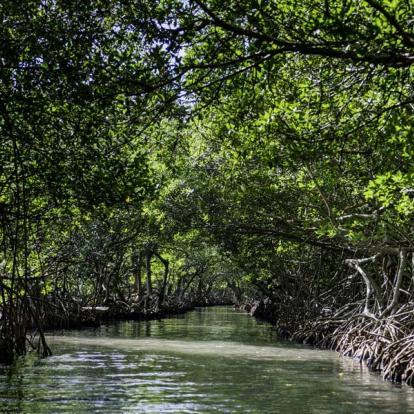 Voyage au Honduras: Du Monde Maya à la Barrière de Corail