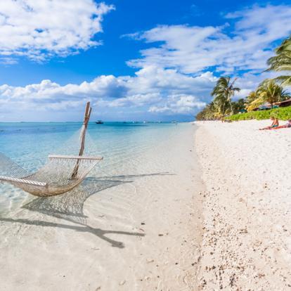 Voyage Ile Maurice : Insolite Ile Maurice