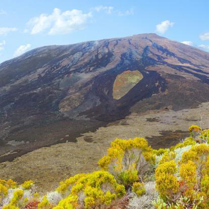 Voyage à La Réunion: La Réunion en version... Détente