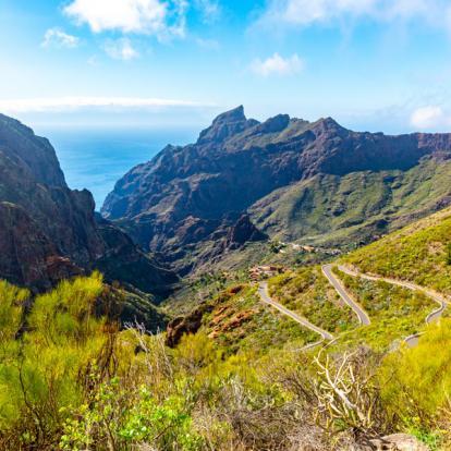 Circuit aux Iles Canaries : Balades au Cœur des Parcs Nationaux