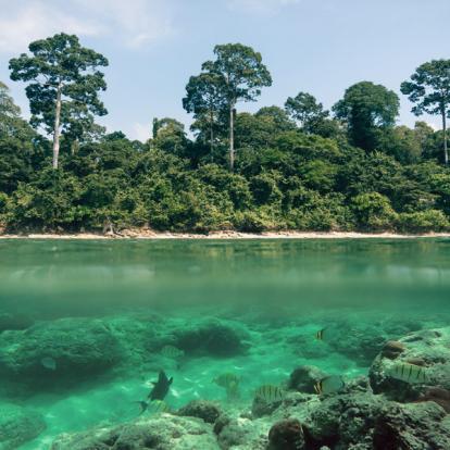 Séjour en Inde : Les Plages vierges d'Andamans