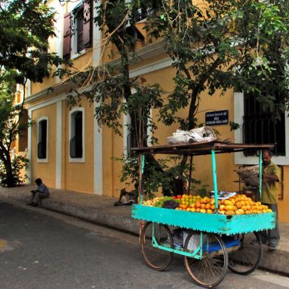 Voyage en Inde : Du Tamil Nadu au Kerala
