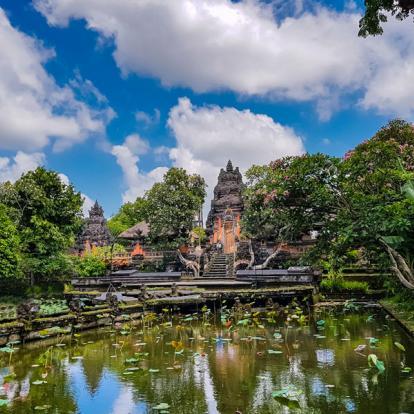 Voyage en Indonésie : Voyage Bio à Bali