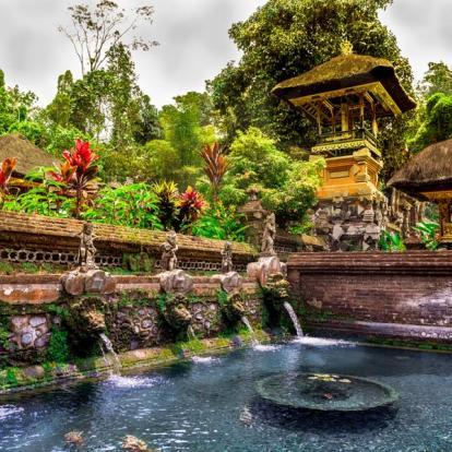 Circuit en Indonésie : Voyage Bio à Bali