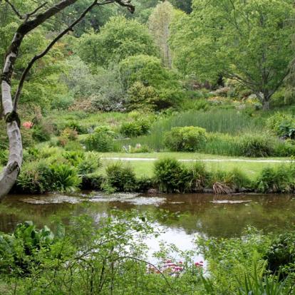 Circuit en Irlande : Etonnants Jardins D'irlande