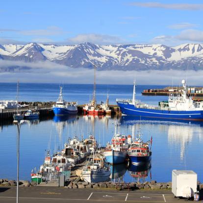 Voyage en Islande : Islande au Cœur des Eléments