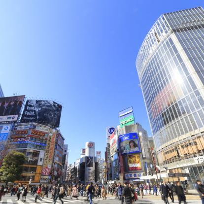 Voyage au Japon : Couleurs d'Automne