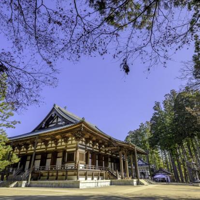 Circuit au Japon : Couleurs d'Automne