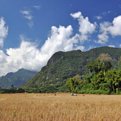 Circuit au Laos : Randonnée à Muang Ngoi