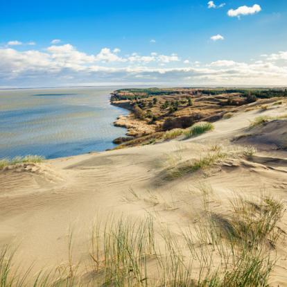 Circuit Pays Baltes : La Côte d'Ambre