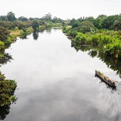 Circuit à Madagascar: L'Est Tropical