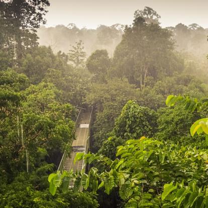 Voyage en Malaisie : Incursion Culturelle au Coeur de Borneo