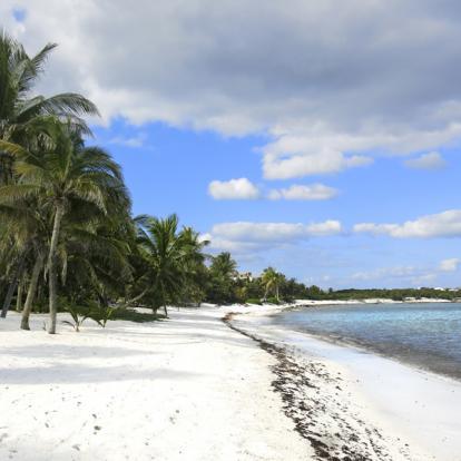 Voyage au Mexique : Yucatan Verde
