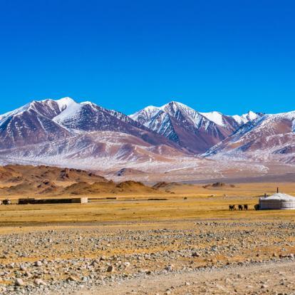 Voyage en Mongolie : La Grande Boucle Nord-Sud
