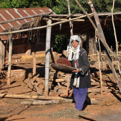 Circuit en Birmanie : Trekking au Triangle d'or et ses Multiples Ethnies