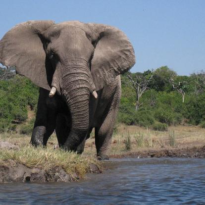 Voyage en Namibie : Caprivi, Du Kalahari aux Chutes Victoria