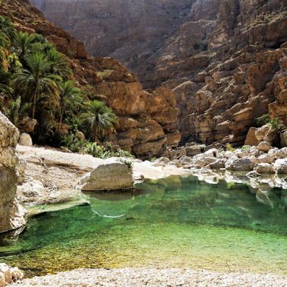 Voyage à Oman : Incursion Bédouine