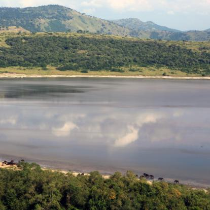 Circuit en Ouganda : La Perle de l'Afrique