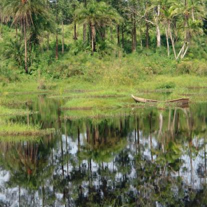 Circuit en Ouganda : De la Source du Nil aux Gorilles des Virunga