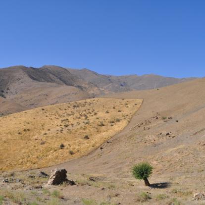 Circuit en Ouzbékistan : Les Mystères de la Route de la Soie