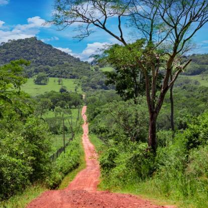 Voyage au Panama : Le Panama Sauvage et Authentique