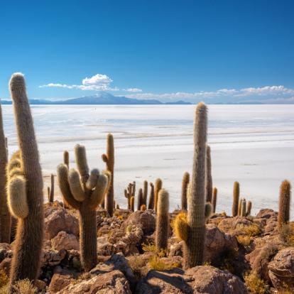 Combiné Pérou - Bolivie : la Magie des Andes