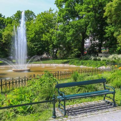 Sjour en Pologne : Cracovie et ses environs