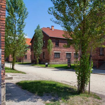 Séjour en Pologne : Cracovie et ses environs