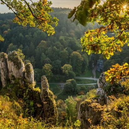 Voyage en Pologne : Cracovie et ses environs