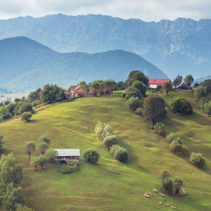Voyage en Roumanie : Montagnes et Châteaux