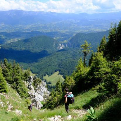Circuit en Roumanie : Montagnes et Châteaux